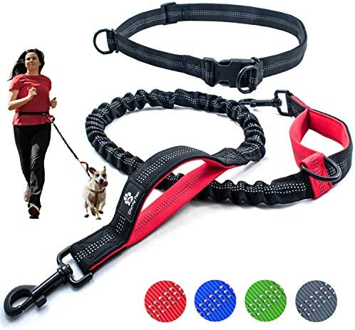Chunky Paw Training Reflective Adjustable