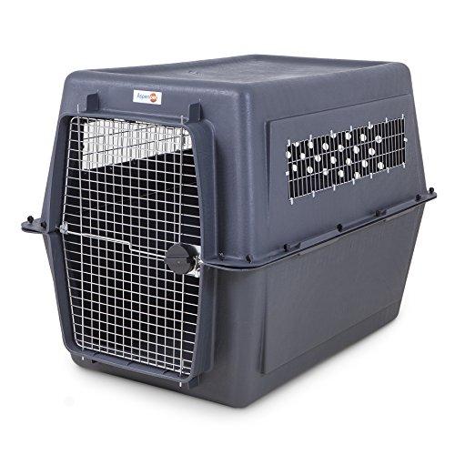 Petmate 21647 Pet Porter Fashion Dog Crate, Giant, - Vari Kennel 700