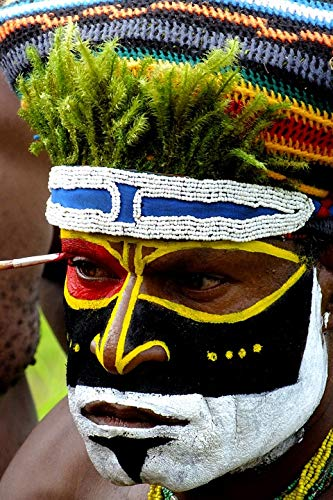 Home Comforts Canvas Print African Portrait New Guinea Mask Papua Painted Vivid Imagery Stretched Canvas 32 x 24