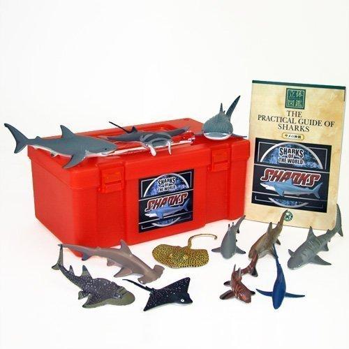 colorata-sharks-vr-full-set-solid-illustrated-japan-import-by-karo-rosa-macerata-figure