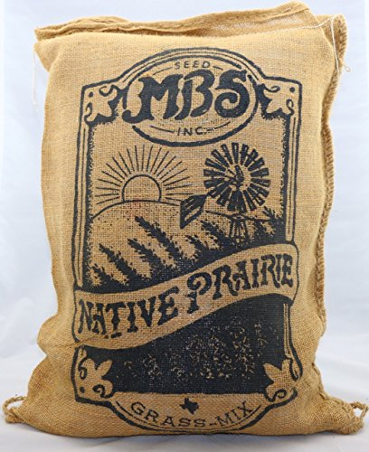 Native Prairie Grass Mix - 10 lb Bag by MBS Seed (Image #4)