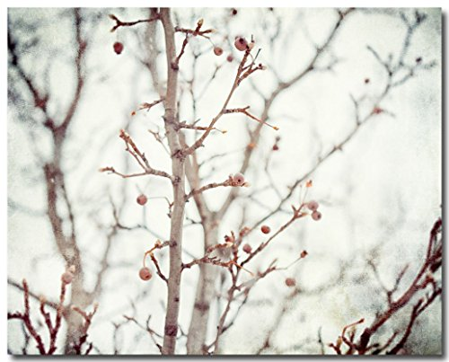 Pear Tree Photo (Rustic Winter Pear Tree Bathroom Decor Photograph)