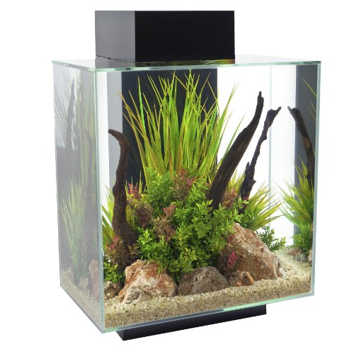 Fluval Edge 12-Gallon Aquarium with 42-LED Light, Black by Fluval