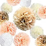 "Arts & Crafts : VIDAL CRAFTS 20 Pcs Party Tissue Paper Pom Poms Set (14"", 10"", 8"", 6"" Paper Flowers) for Wedding, Birthday, Baby Shower, Bachelorette, Nursery Decor - Champagne, Peach, Ivory, White"