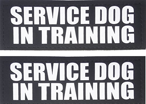 Albcorp Reflective Service Dog In Training Patches with Hook Backing for Service Animal Vests /Harnesses Large (6 X 2) Inch
