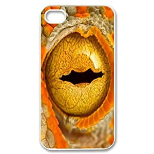 IPhone 4/4s Case Chameleon Eye Protective Cute for Girls, Iphone 4 Cases for Guys Nuktoe, {White}