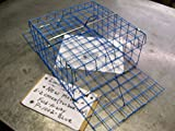 Best Crab Traps - E-Z Catch Limited Blue Crab Two Door Fold-A-Way Review