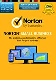 Software : Norton Small Business-10 Device [Download Code]