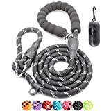 BAAPET 6 Feet Slip Lead Dog Leash Anti-Choking with Upgraded Durable Rope Cover and Comfortable Padded Handle for Large, Medium, Small Dogs Trainning with Poop Bags and Dispenser