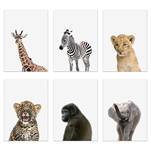 Crystal Baby Safari Animals Poster Prints - Set of 6 (5x7) Adorable Furry African Portraits Wall Art Nursery Decor - Gorilla - Elephant - Zebra - Giraffe - Leopard - Lion