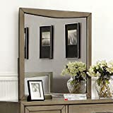 Snyder Ii Contemporary Style Mirror