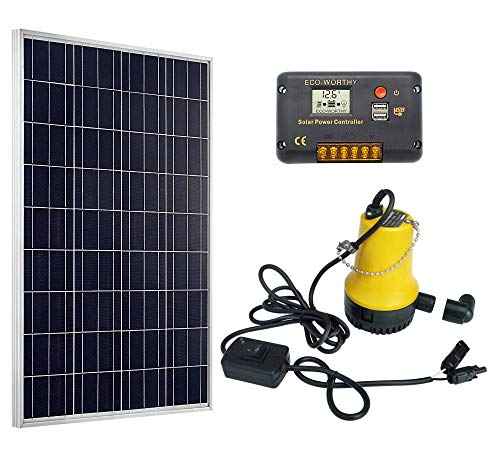 (ECO-WORTHY Solar Water Pump System Kit 100W Solar Panel + 50W Submersible Water Pump + 20A Controller for Watering )