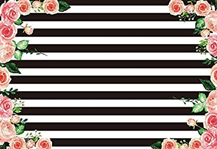 Amazoncom Aofoto 6x4ft Black And White Striped Pink Rose