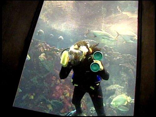 Popular Mechanics For Kids - Season 1 - Episode 15 - Aquariums