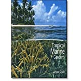 Tropical Marine Gardens (Em Portuguese do Brasil)
