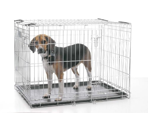 Savic Jaula Perro Metal 61x46x53: Amazon.es: Productos para mascotas