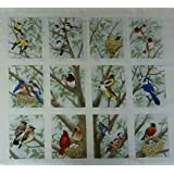 Beautiful Birds By Tracy Lizotte for Elizabeth's Studio Cotton By the Panel
