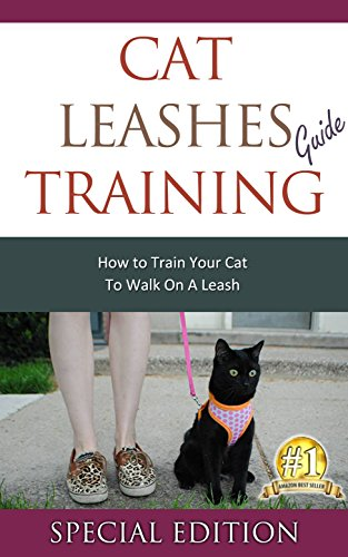 Cat Leashes Training Guide: How to Train Your Cat to Walk on a Leash