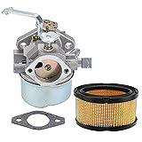 Coolwind Carburetor fit Tecumseh 640152A 640023 640051 640140 640152 HM80 HM90 HM100 8-10 HP Engines Snowblower Mower 5000w Generator
