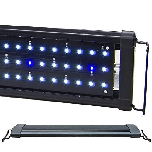 "BeamsWork EA White Blue LED Aquarium Fish Tank Light Extendable Timer Ready (48"" - 54"")"