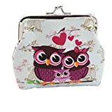 things under 1 - Wallet,toraway Vintage Women Small Coin Pockets Hasp Owl Purse Clutch Wallet Bags (White)