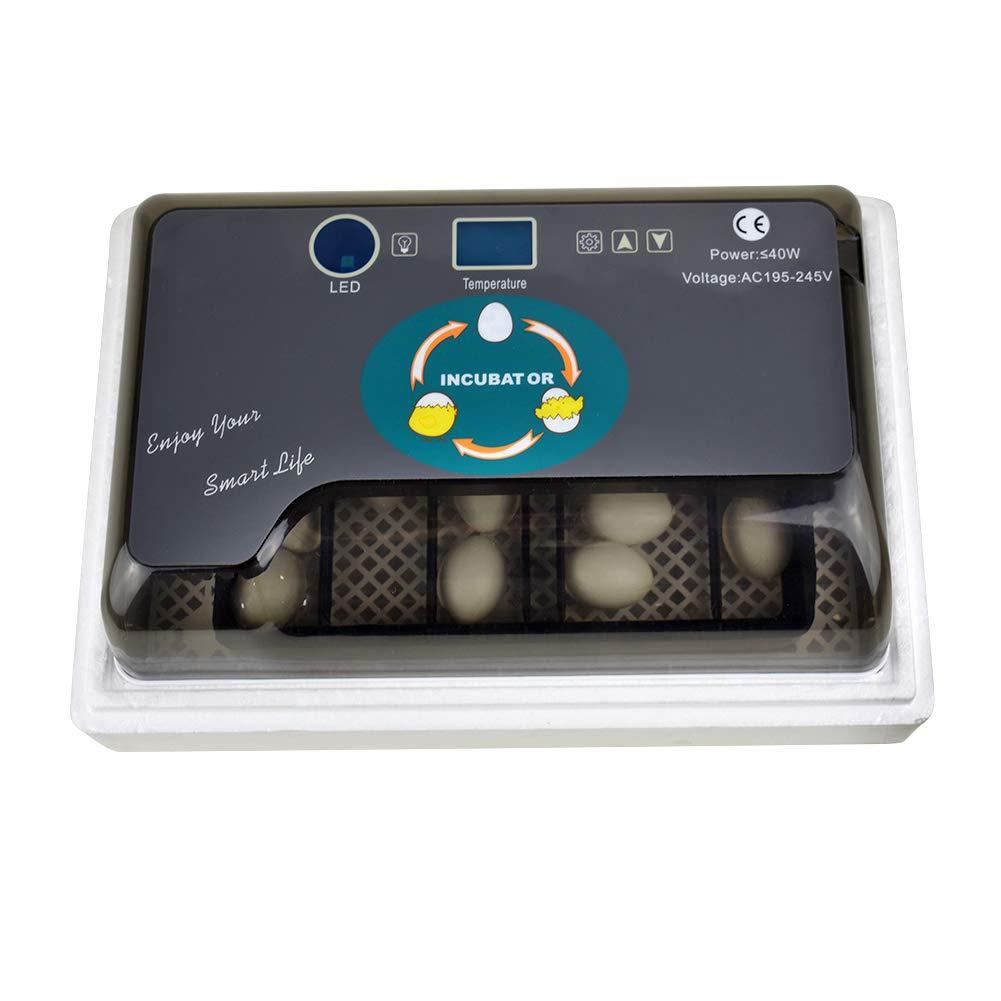 elegantstunning Mini Home Incubators for Chicken Quail Duck Bird Eggs Black US Regulation 4