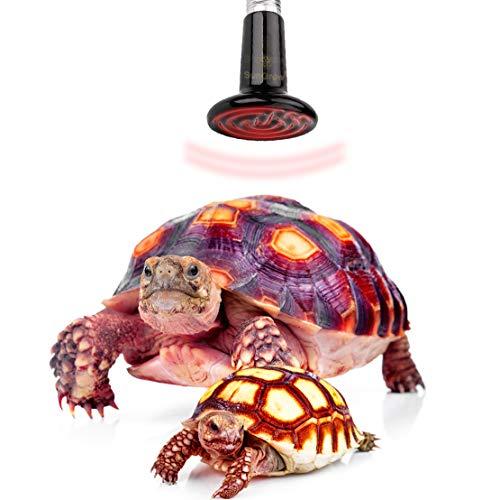 SunGrow Tortoise Ceramic Heating Lamp, 150-Watt Infrared Heat Emitter, 110-Volt Energy-Efficient Infrared Light Bulb (Tortoise Supply)