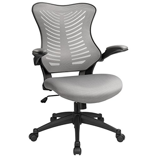 Furmax Mid Back Office Chair Mesh Desk Computer Chair With Flip-Arms Swivel Task Chair with Ergonomic Headrest and Lumbar Support (Gray) by Furmax