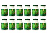 4life PBGS Antioxidant Combination of Pinebark & Grapeseed Extracts 120 Tablets each (pack of 12 )