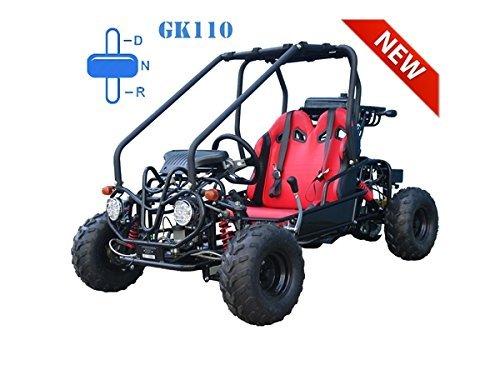 FamilyGoKarts GK110 Youth Go Kart in Green