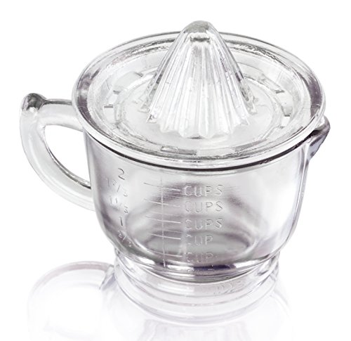 Vintage Style Glass Juicer - 2 Cups