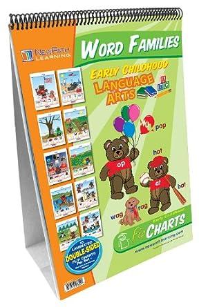 amazon com newpath learning word families curriculum mastery flip