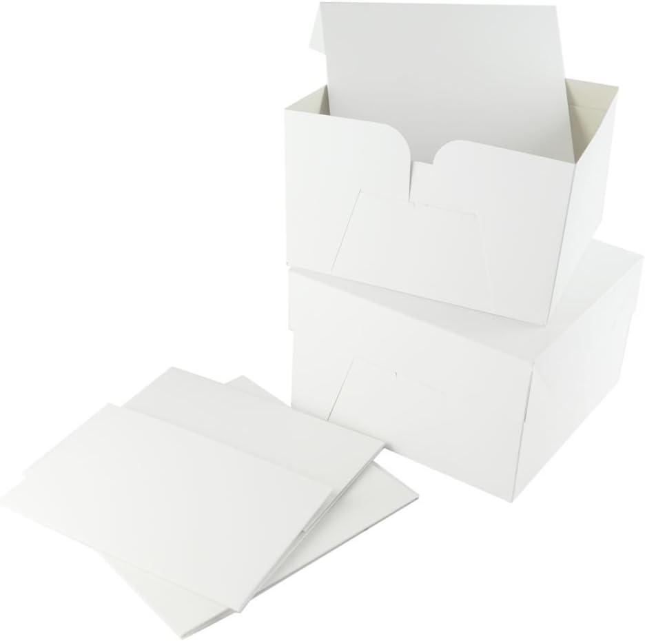 Caja para tartas con tapa extraíble (25 cm), color blanco: Amazon.es: Hogar