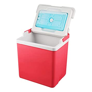 Sunneey Nevera Rígida Portátil Enfriador, 10L Mini Refrigerador ...