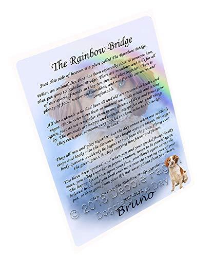 (Doggie of the Day Rainbow Bridge Brittany Spaniel Dog Blanket BLNKT91119 (60x80 Fleece) )