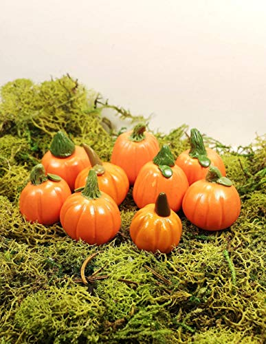 (Fairy garden accessories, terrarium decor. Miniature pumpkins. 9 piece set.)