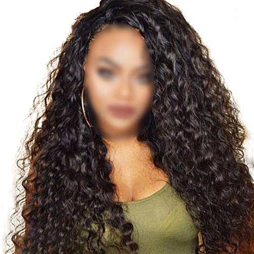 Water Wave Lace Front Human Hair Wigs Front Lace Wigs With Baby Hair Pre Plucked Natural Hairline 150% Remy,20inches,150% (Swiss Waldorf)