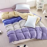 Sweet Love Violet Comforter Duvet Insert Kids Comforter Teen Comforter Down Alternative Comforter, Queen Size