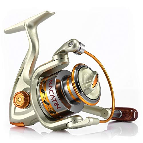 (Mudent Spinning Reel Fishing Gear Fixed Spool Novice Beginner Angler Saltwater Freshwater Ball Bearing Drag Brass Gears Metal Strong Corrosion Resistance Stainless Steel)