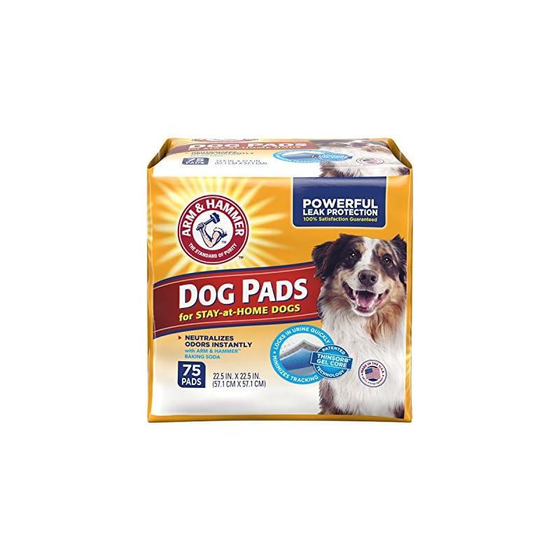 dog supplies online arm & hammer ultra absorbent adult dog pads, 75 count