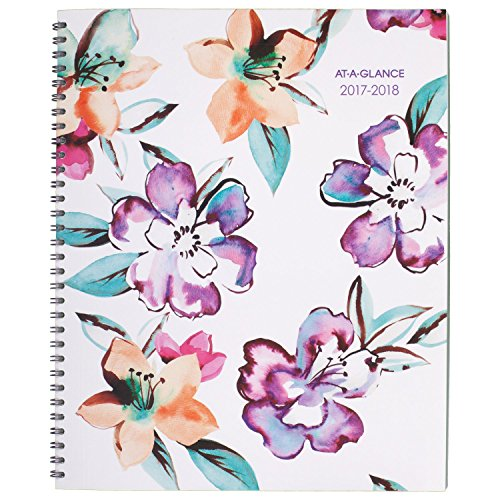 "AT-A-GLANCE Academic Monthly Planner, July 2017 - June 2018, 8-1/2"" x 11"", June Design (1012-900A)"