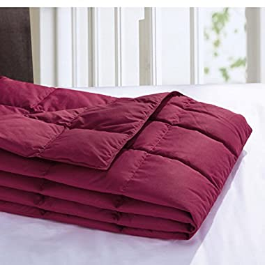 Puredown All Season Goose Down Sport Blanket, Down-proof Peach Skin Fabric Packable Throw, Red