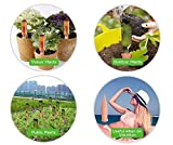 Terracotta Plant Watering Stakes - 6 Pack Set
