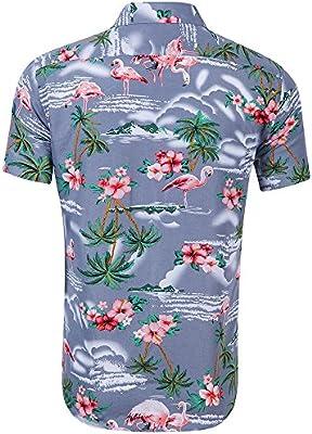 MJCDNB Hombres, Manga Corta, Camisa Hawaiana Playeras Playeras Blusa Delgada para Hombre Blusa Holgada Estilo Flamenco para Imprimir Camisa de Manga Corta de Gran tamaño Pareja Casual Tops: Amazon.es: Hogar