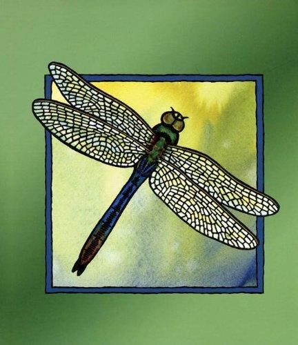 Dragonfly Blank Journal pdf epub