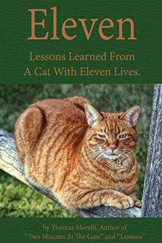 Eleven: Eleven Lessons My Cat Taught Me