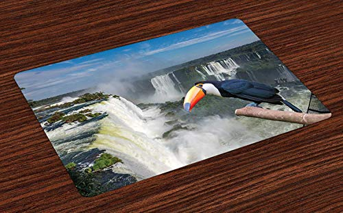 Argentina Non-Slip Doormats Welcome Mat Accent Area Rug, Funny Toucan Posing at The Cataratas of Iguazu Waterfalls on The Border of Brazil, Indoor Bathroom Mat Floor Cover Mat,16'' x 24''
