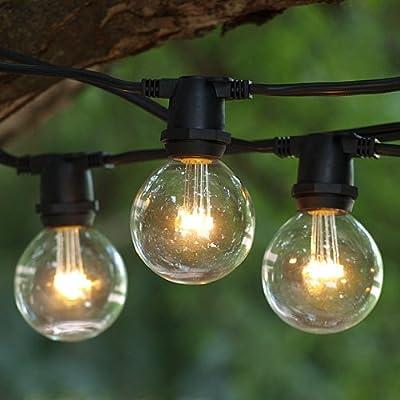 LED String Lights 25 ft Commercial C9 Black & LED Premium G50 Bulbs WW