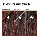 L'Oreal Paris Couleur Experte 2-Step Home Hair