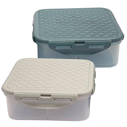 Jaypee Plus Plastic Container Now Box Divider 870Ml/15Cm, Pack of 2, Multicolor